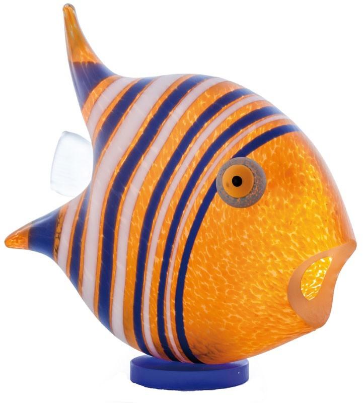Angelfish, orange